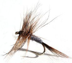 Finding the best trout flies for fly fishing for someone is not an easy task. There are lots and lots of trout flies to choose from which makes selecting just the right trout fly even