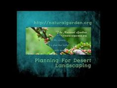 Planning For Desert Landscaping Garden Oasis, Drought Tolerant Plants, Front Yard Landscaping, Planting, Deserts, How To Plan, Landscape, Plants, Scenery