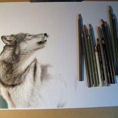 Wolf drawing tattoo inspiration