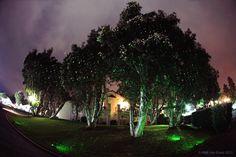 Green lights at #LaCosta #FilmFestival2013 #BlissLights