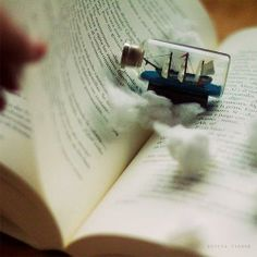 There is no better frigate than a book to take us lands away.   Emily Dickinson