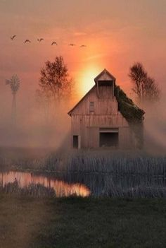 A barn of solid timber stands its ground as birds take wing and mist arises to laud the dawning of a new day.
