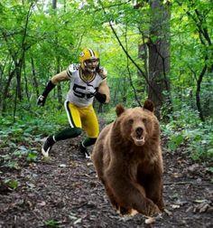 Pretty bears slamming