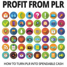 Profit From PLR:  For ANYONE who wants to learn how to take PLR content and turn it into actual streams of income for their business.