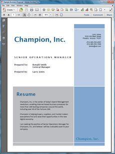 Personal Resume Sample Proposal   The Personal Resume Sample Proposal Is  From An Individual Pitching His