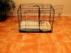 I can't wait to get this Puppy Apartment for Chloe!  It seems the perfect way to train your dog!