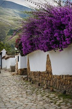Beautiful street in Villa de Leyva, considered one of the finest colonial villages of Colombia Dream destinations, Surreal Places To Visit Places Around The World, Oh The Places You'll Go, Places To Travel, Places To Visit, Around The Worlds, Beautiful Streets, Beautiful World, Beautiful Places, Magic Places