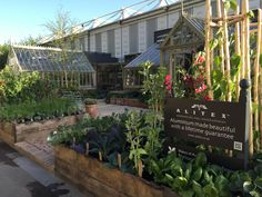 RHS Chelsea 2015. Our award winning stand, complete with Scotney greenhouse, large bespoke structure and vegetable garden, with home-grown veggies.