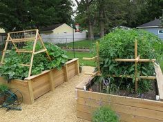 The Garden - Raised Beds by ZombieGirl