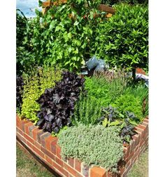 Bricks Used for Raised Garden Bed - Home and Garden Design Idea's