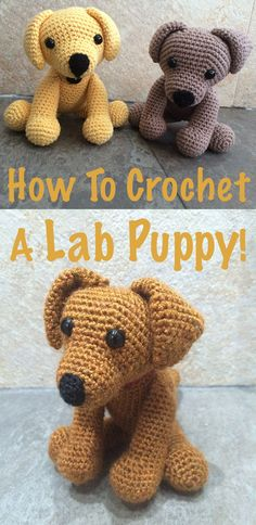 How To Crochet A Lab Puppy Toy. Your Free Crochet Labrador Pattern. Toys Patterns dogs Crochet Labrador: How To Make Your Own Toy Dog - The Labrador Site Crochet Dog Patterns, Amigurumi Patterns, Crochet Projects, Sewing Projects, Toy Puppies, Stuffed Animal Patterns, Labradors, Crochet Animals, Crochet Dolls