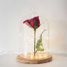 Inspired by Beauty & The Beast, you can create your own enchanted bell jar!