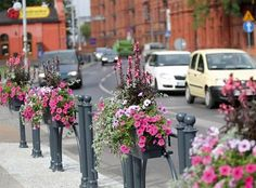 How to separate the streets from paths? Use flowers! Flower Boxes, Flowers, Timeline Photos, Separate, Paths, Cities, Basket, Gardening, Window Boxes