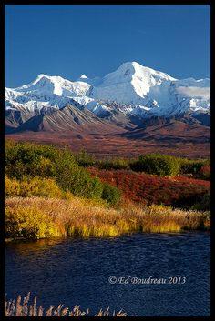 Denali in Autumn, Alaska ~ incredible colors
