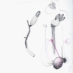 Seulgi Kwon - drawingsThinkHand
