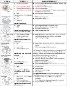 SPINAL CORD LESIONS