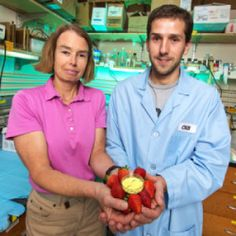 Natural plant compound prevents Alzheimer's disease in mice. … the flavonol called fisetin prevented the progressive memory and learning impairments. 1.27.2014
