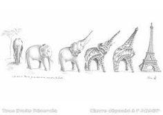 Afbeeldingsresultaat voor bird transformation drawing