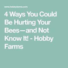 4 Ways You Could Be Hurting Your Bees—and Not Know It! - Hobby Farms
