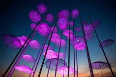 """""""Umbrellas"""", the sculpture by Giorgos Zogolopoulos is illuminated in pink light to mark Breast Cancer Awareness Month in Thessaloniki in northern Greece. EARLY DETECTION CAN SAVE LIVES! Pictures Of The Week, Cool Pictures, Cool Photos, Umbrella Lights, Picture Editor, Light Art, Big Picture, Color Photography, Breast Cancer Awareness"""