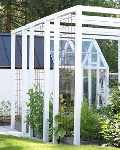 fence around pool - half the height, but use the wire frame for climbers. (have same steel wire veg garden - it's brilliant) Pergola trellis Diy Pergola, Pergola Canopy, Outdoor Pergola, Pergola Shade, Pergola Kits, Rustic Pergola, Retractable Pergola, Pergola Roof, Metal Pergola