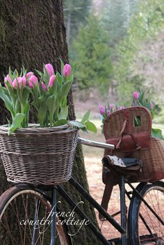FRENCH COUNTRY COTTAGE: Vintage Bicycle Planter  Oh how I love this look!!!
