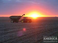 Harvest Beauty | Flickr - Photo Sharing!