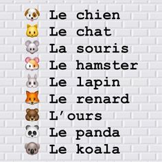 French Words Quotes, Basic French Words, French Phrases, How To Speak French, Learn French, French Language Lessons, French Language Learning, French Lessons, French Teaching Resources