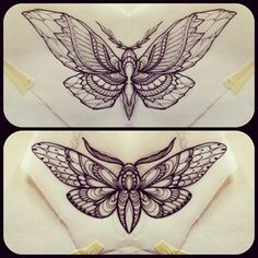 butterfly/moth tattoo