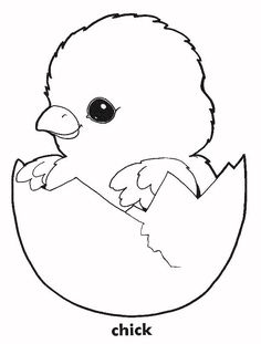 Printable Pictures of Baby Chicks | to view the printable picture print and color coloring page will open ...