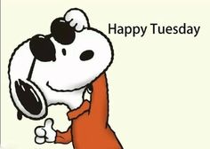Tuesday Meme, Happy Tuesday Quotes, Hello Tuesday, Snoopy Love, Charlie Brown And Snoopy, Peanuts Cartoon, Peanuts Gang, Snoopy Cartoon, Good Work Quotes