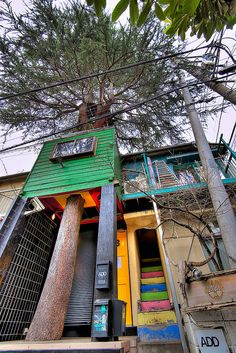 Harajuku Treehouse Hideaway    This is the famous Hideaway cafe in Harajuku. It's built around a live tree and the interior is all treehouse themed. The owner is a famous Japanese treehouse guru, Kobayashi Takashi.