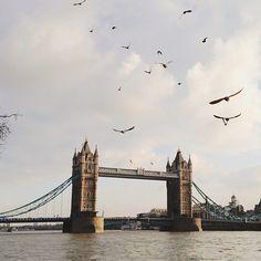 Tower Bridge by dearleila | instagram