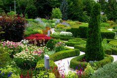 Toronto Ontario ~ Canada ~ Edwards Gardens ~ Botanical Garden by Onasill ~ Bill Badzo Rare Plants, Exotic Plants, Different Plants, Types Of Plants, Kew Gardens, Botanical Gardens, Plant Classification, Singapore Botanic Gardens, Toronto Ontario Canada