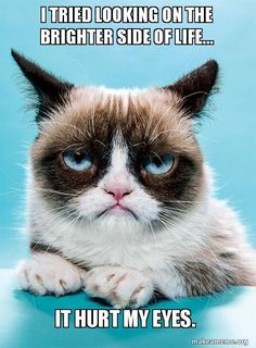 I tried looking on the brighter side of life It hurt my eyes.  grumpy cat br - Funny Cat Quotes #funnycat #catquotes #cats