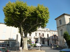 Apt je francouzské město a podprefektura v departementu Vaucluse, v regionu Provence-Alpes-Côte d'Azur. Stojí na staré římské cestě, 53 kilometrů od Avignonu. Protéká jím řeka Cavalon. #Apt #Provence #Francie #JiříHrdý