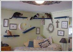 Gatos: A casa dos sonhos ~ Arte De Fazer   Decoração e Artesanato