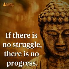If there us no struggle then there is no progress