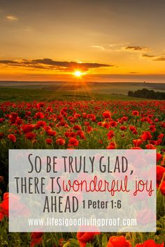 "There is a promise you should know about in the Bible that will give you hope through all your trials... In 1 Peter 1:6 it says, ""There is wonderful joy ahead, even through you must endure many trials."" Two things about this verse really pop out at me..."