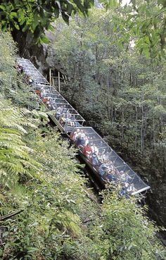 Katoomba Scenic Railway, Blue Mountains,NSW
