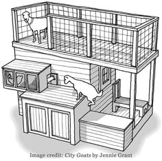 Goat Shed Plans from City Goats by Jennie Grant