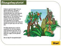 """Skattjakt: Djungelmysteriet 4-6 årEn  riktigt rolig skattjakt för alla små äventyrare! Skattjakten """"gör""""  barnkalaset och är den enda aktivitet som behövs. Låt barnen ge sig ut  på expedition i djungeln för att hitta Mayaindianernas glömda stad och  dess mytomspunna skatt! Det blir ett riktigt äventyr fyllt av spännande  utmaningar, gåtor som måste lösas och möten med djungelns vilda djur!  Allt som behövs finns i produkten - lägg bara till en gnutta fantasi!"""