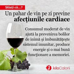 Science And Nature, Good To Know, Red Wine, Routine, Alcoholic Drinks, Bread, Health And Wellness, Brot, Liquor Drinks