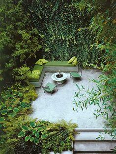 """""""Um jardim deve combinar o poético e o misterioso com uma sensação de serenidade e alegria."""" Luis Barragan    Eu não tenho dedos verdes, meu..."""