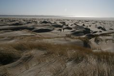 Beach 'Hors' at 'wadden' island Texel at The Netherlands. I have such fond memories of the three weeks I spent on Texel.