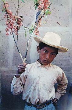 Boy with Birds, Morelia, Michoacán, Mexico, 1956