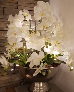 Winter Floral Arrangements, Orchid Flower Arrangements, Vase Arrangements, Flower Centerpieces, Flower Vases, Blooming Flowers, Love Flowers, Beautiful Flowers, Orchid Show