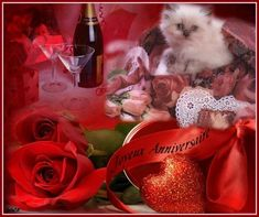 Avec des roses, des coeurs et un chaton: Joyeux Anniversaire