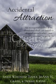 Accidental Attraction: #Premade #ebook #covers. #contemporary #romance #suspense #comedy #youngadult #YA #adult #love #faith #inspirational #friendship #collection #novellas #fiction #book #Christian #clean #indie #author #writing