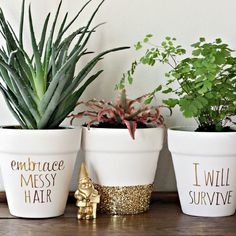 Have fun and create your favorite phrases on flower pots. DIY gold foil lettering and glitter makes for a unique gift or home decor item.
